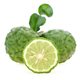 Bergamot on white background. - PhotoDune Item for Sale