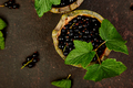 Blackcurrant berries with leaves, black currant in green bowls. - PhotoDune Item for Sale