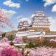 Himeji Castle, Japan in Spring Season - PhotoDune Item for Sale