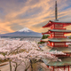 Fujiyoshida, Japan view of Mt. Fuji and Pagoda - PhotoDune Item for Sale