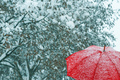 Close up of red umbrella in snow - PhotoDune Item for Sale
