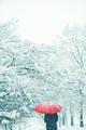Woman under red umbrella walking in winter snow - PhotoDune Item for Sale
