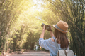 Young woman traveler take a photo at beautiful bamboo grove - PhotoDune Item for Sale