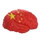 Chia. Flag on Human brain. 3D illustration. - PhotoDune Item for Sale