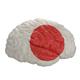 Japan. Flag on Human brain. 3D illustration. - PhotoDune Item for Sale