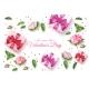 Vector Valentine Day Rose Flower Present Box - GraphicRiver Item for Sale