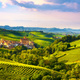 Langhe vineyards panorama, Barolo village, Piedmont, Italy Europ - PhotoDune Item for Sale