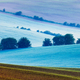 Rolling landscape of  South Moravia in the mornin - PhotoDune Item for Sale