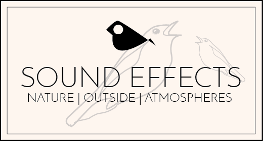 Sound Effects - Nature Outside Atmospheres