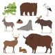 Animal Vectors - GraphicRiver Item for Sale