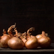 bunch of onions on rustic wood in dark setting - PhotoDune Item for Sale