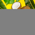 Coconut oil, tropical leaves and fresh coconuts, top view - PhotoDune Item for Sale