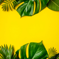 Tropical leaves and flowers on yellow background - PhotoDune Item for Sale