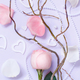 Spring composition with rose, petals and hearts - PhotoDune Item for Sale