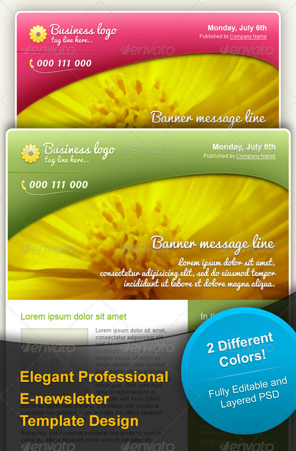 Elegant & Professional E-newsletter Template Desig - E-newsletters Web Elements