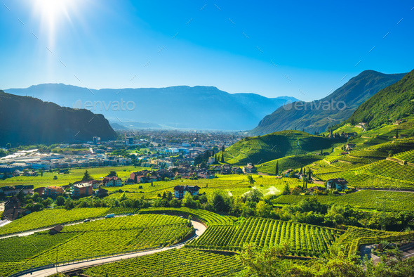 Vineyards view in Santa Maddalena Bolzano. Trentino Alto Adige S - Stock Photo - Images