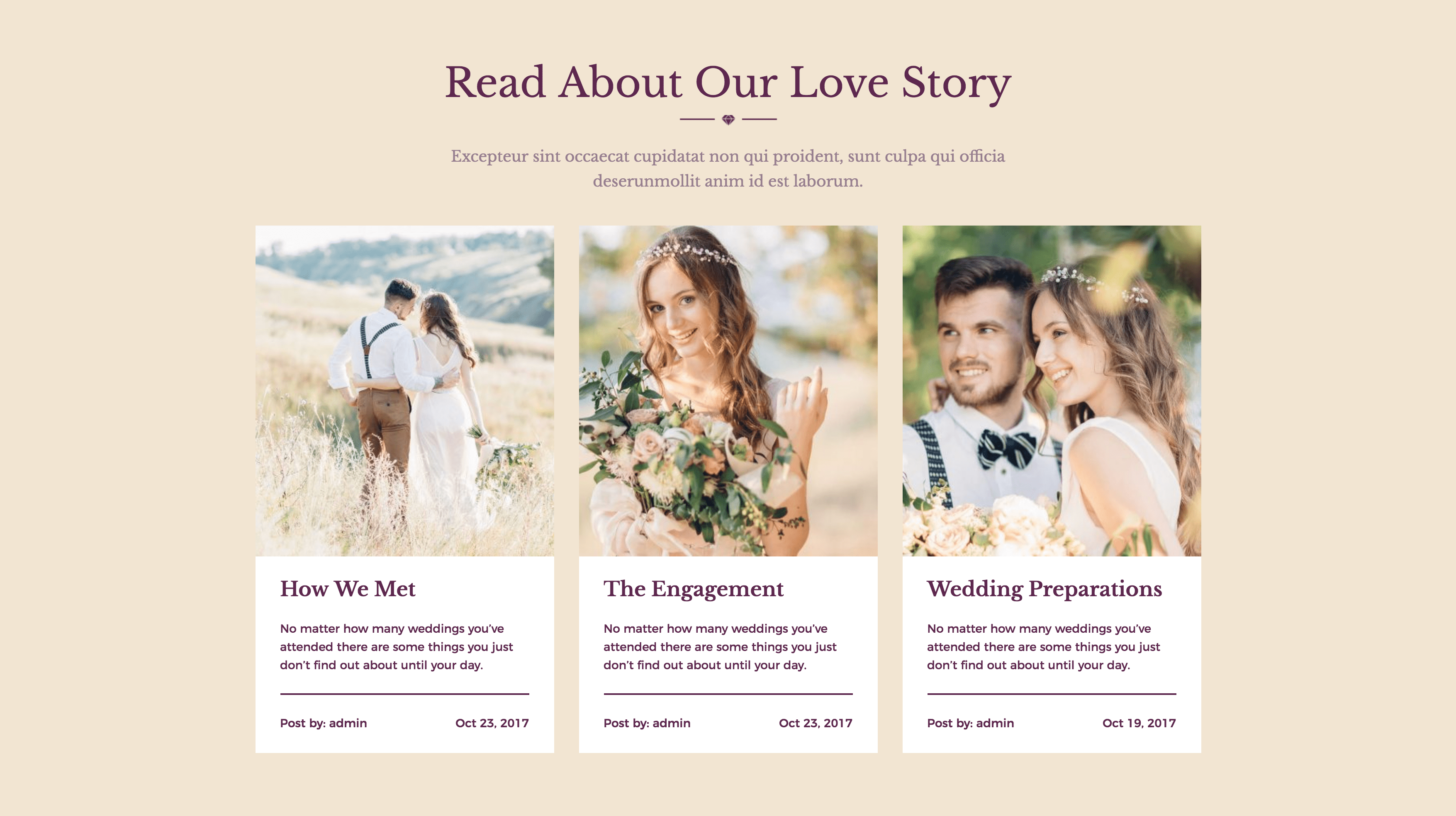 SheSaidYes - Engagement & Wedding WordPress Theme by modeltheme | ThemeForest