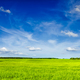Spring summer green field scenery lanscape - PhotoDune Item for Sale