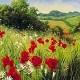 Meadow - AudioJungle Item for Sale