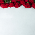 Beautiful red roses, flay lay, space for text - PhotoDune Item for Sale