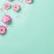 Flowers composition on a pastel  background - PhotoDune Item for Sale