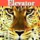 Elevator Music Pack