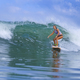 Young woman surfer on a blue wave - PhotoDune Item for Sale
