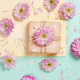 Flowers composition with flowers, petals  and gift box - PhotoDune Item for Sale
