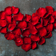 Heart shaped red rose leaves on vintage metal background - PhotoDune Item for Sale