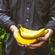 Bananas - PhotoDune Item for Sale