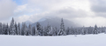 Panorama of fantastic winter landscape with snowy trees - PhotoDune Item for Sale