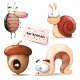 Cockroach, Snail, Nuts, Worm - Animals Set - GraphicRiver Item for Sale