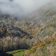 Morning mist over a wooded valley - PhotoDune Item for Sale