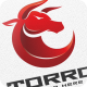 Bull Torro - Logo Template - GraphicRiver Item for Sale