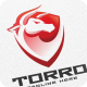 Torro - Logo Template - GraphicRiver Item for Sale