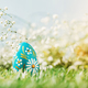Colorful Easter egg on the green grass. - PhotoDune Item for Sale