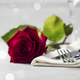 Valentine's Day or romantic dinner concept, close up - PhotoDune Item for Sale