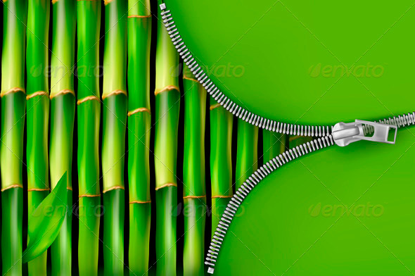 Bamboo Background with Open Zipper - Flowers & Plants Nature