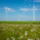 Wind power plants and dandelion flowers - PhotoDune Item for Sale