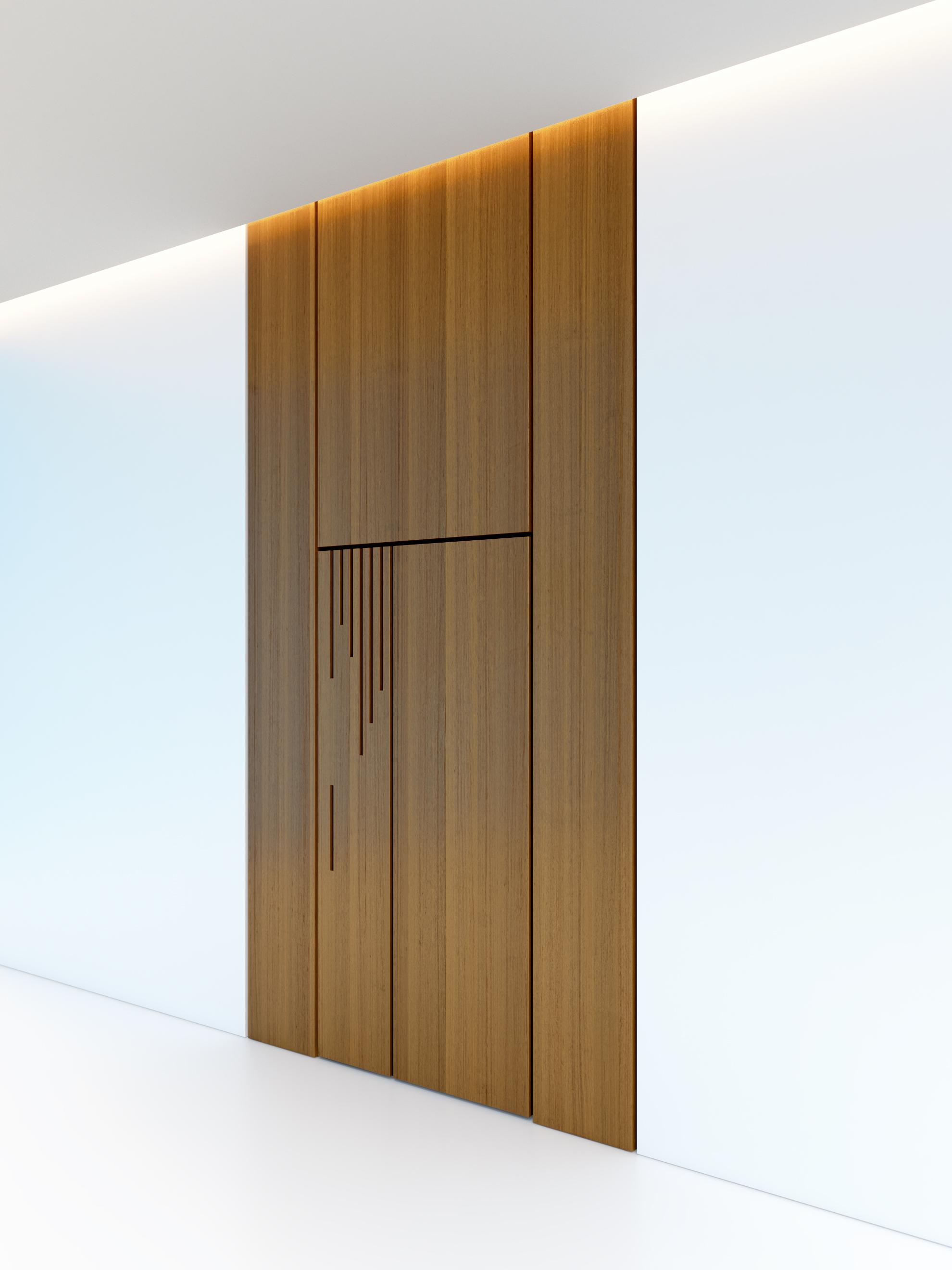 Contemporary Wooden Door