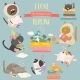 Cartoon Cats Reading Books - GraphicRiver Item for Sale
