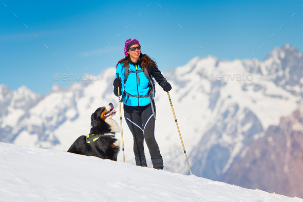Alpinist girl on skis and sealskins alone with his dog faithful - Stock Photo - Images