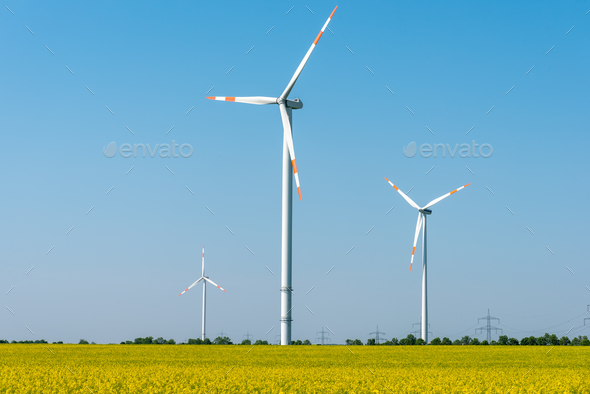 Blooming rapeseed field with wind turbines - Stock Photo - Images