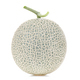 Melon on white background. - PhotoDune Item for Sale