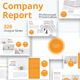 Company Report Powerpoint Presentation Template - GraphicRiver Item for Sale