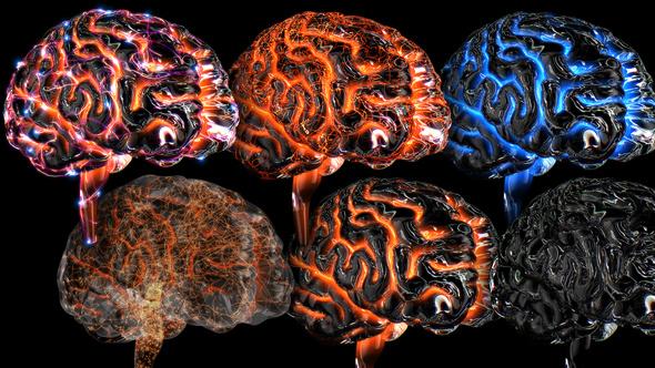 Blue Brains 2 - 1