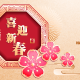 Chinese New Year The Year of The Pig - GraphicRiver Item for Sale