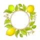 Lemon Branch Vector Frame - GraphicRiver Item for Sale