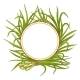 Lemongrass  Plant Vector Frame - GraphicRiver Item for Sale