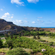 Coconut and sugar canne plantation near Calheta Sao Miguel in S - PhotoDune Item for Sale